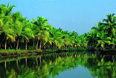 1 NIGHT 2 DAYS BACKWATER PACKAGES IN KERALA