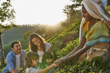 6 NIGHT 7 DAYS FAMILY HOLIDAY PACKAGES IN KERALA