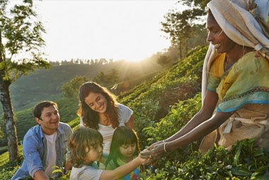7 NIGHT 8 DAYS SPECIAL FAMILY PACKAGES IN KERALA