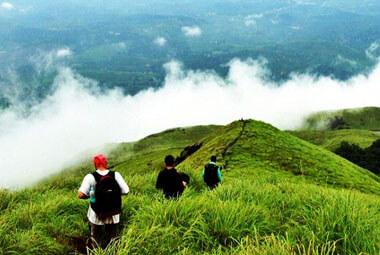 7 NIGHT 8 DAYS WAYANAD PACKAGES